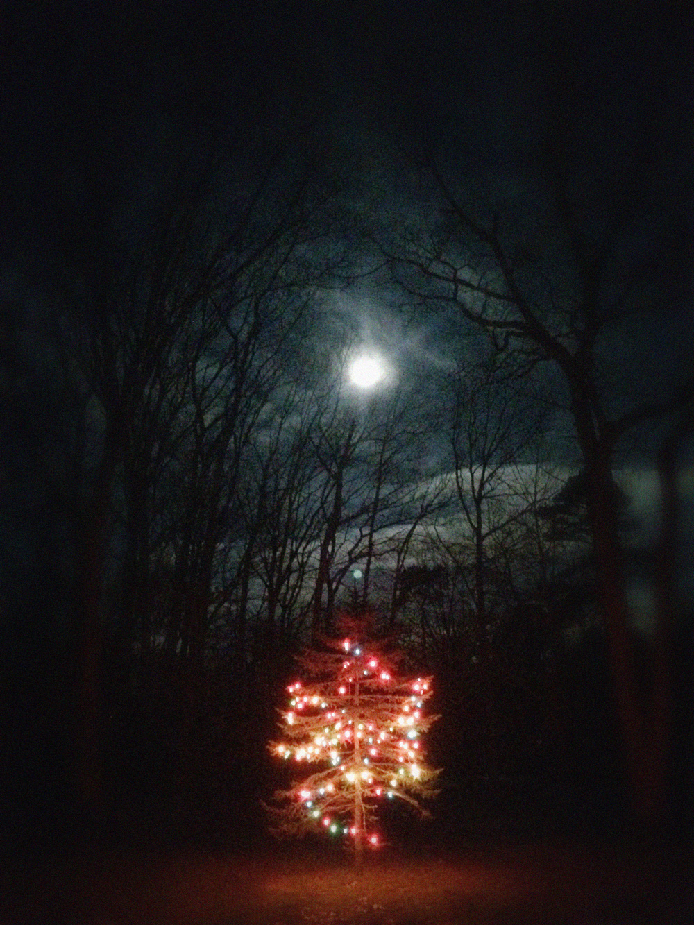 T. Charles Medford NJ Christmas Moon